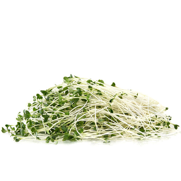 Organic Broccoli Greens