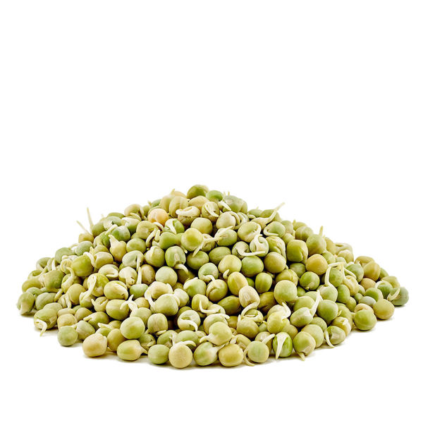 Organic Sprouted Pea Beans